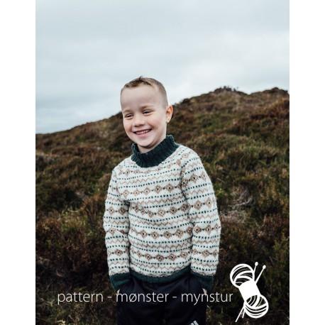 Boy´s Sweater