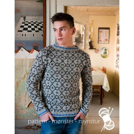 Herre Sweater