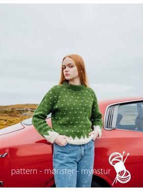 Sweater med lusemønster
