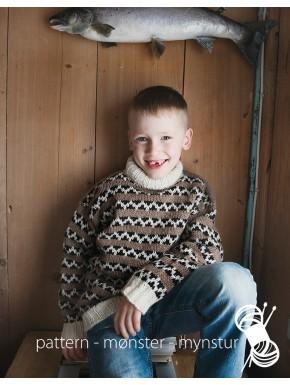 Traditionel trøje til dreng