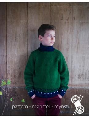 Trøje med rullekrave til dreng